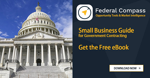 Small Business GovCon eBook